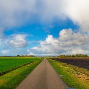 Nederland Europa Bedrijfsuitje