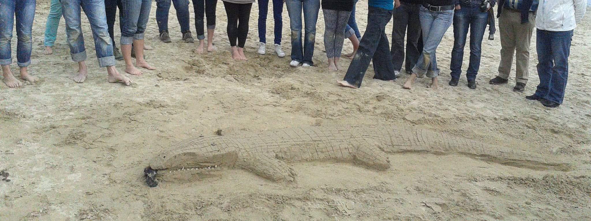 Creatief op het strand